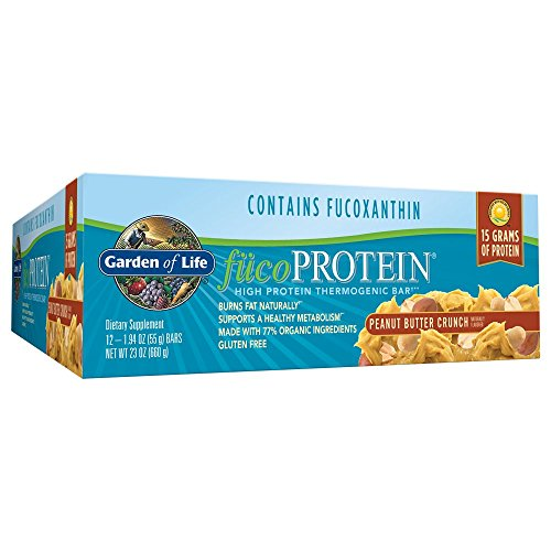 Garden of Life Natural Whole Food High Protein Bars - fucoProtein Peanut Butter Crunch, 55g bars (12 per carton) (Protein 55g)