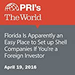 Florida Is Apparently an Easy Place to Set up Shell Companies If You're a Foreign Investor | Tim Padgett