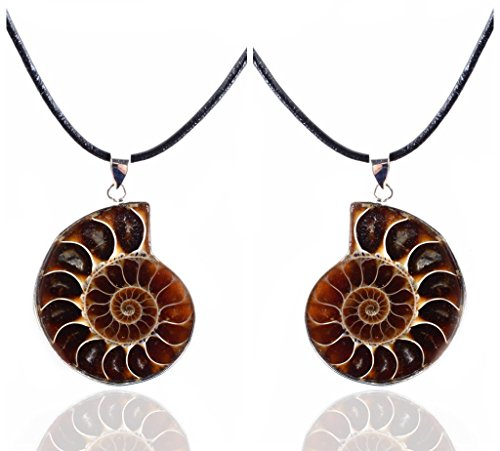 Amandastone 35-40mm Natural Two Matching Ammonite Fossil Stone Gemstone Charms Pendant Necklaces Vintage style ()