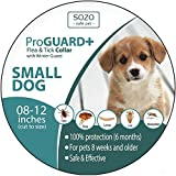 Flea Tick Collar - SMALL DOG with 12 Inch neck or smaller - Natural essential oils