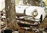 img - for John Salt book / textbook / text book
