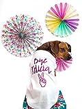 Bye Felicia Dog Shirt