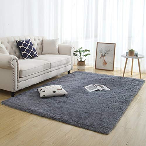 nOnioX Plush Bedroom Carpets Living Room Fuzzy Fur Rugs Kids Room Play Mats Thickened Shag Non-Slip Floor Mats from nOnioX