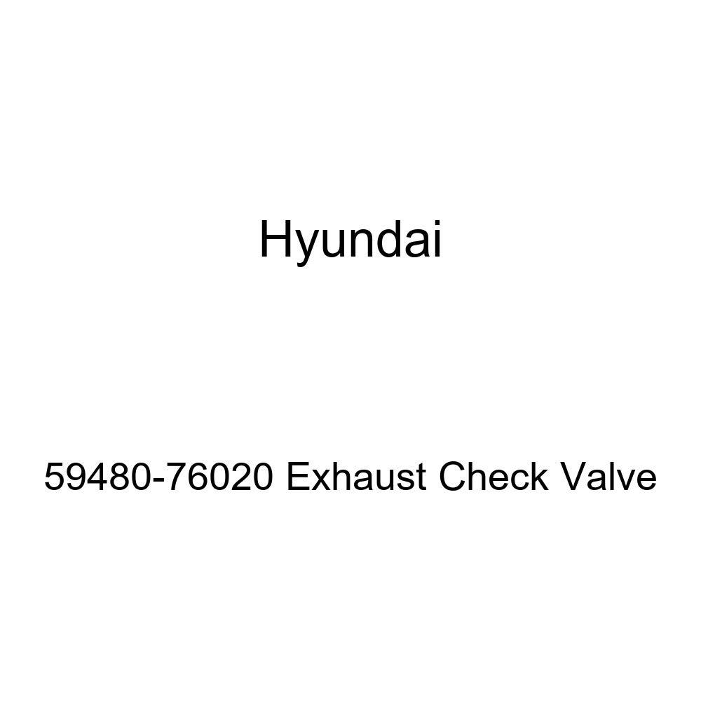 Genuine Hyundai 59480-76020 Exhaust Check Valve