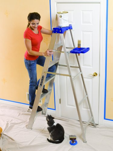 Safe and sturdy ladder