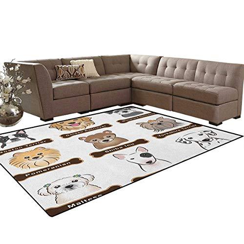 - Dog,Rug,Various Type of Dogs Nameplate Boston Terrier Domestic Animal Faithful Loyal,Home Decor Floor Carpet,Grey Cream White Size:6'6