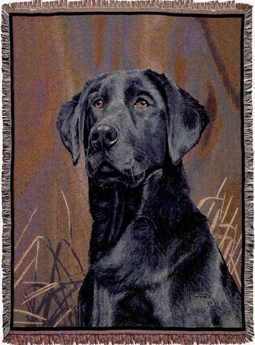 Black Lab Dog Face Portrait Tapestry Throw 50 x 70 by Simply Home