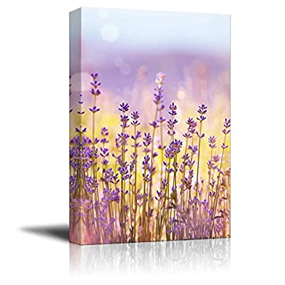 Canvas Prints Wall Art - Lavender Flowers Bloom in Summer Time | Modern Wall Decor/Home Decoration Stretched Gallery Canvas Wrap Giclee Print & Ready to Hang - 36