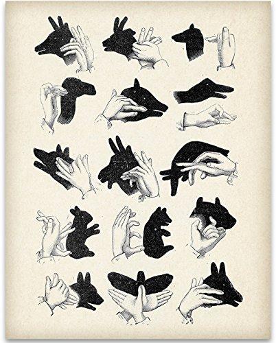 - Shadow Puppets - 11x14 Unframed Art Print - Great Boy's/Girl's Room Decor
