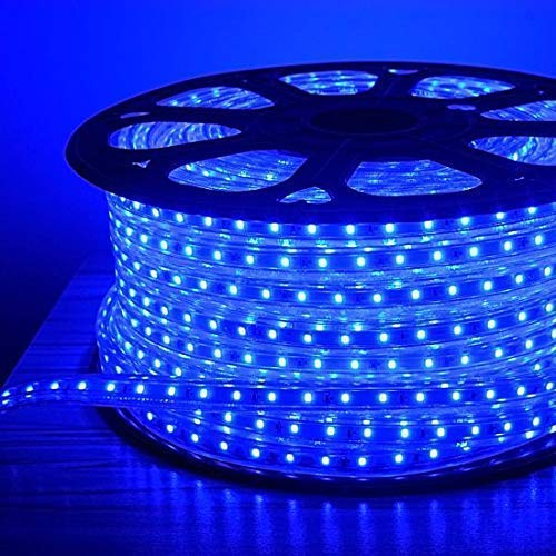 Moonlight LED Strip Rope Light,Water Proof,Decorative led Light with Adapter.Blue, (5 Meter)