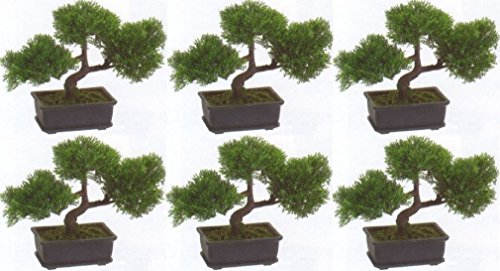 6 Artificial 9'' Cedar Bonsai Tree Topiary In Outdoor Plant Pool Patio Home Decor by Black Decor Home