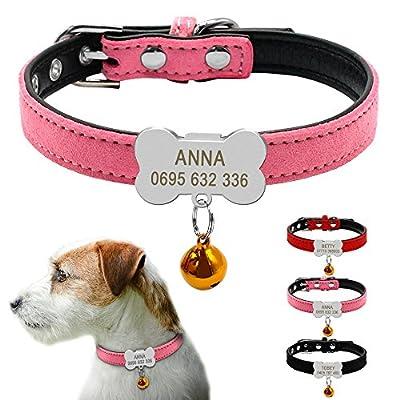 small dog collars