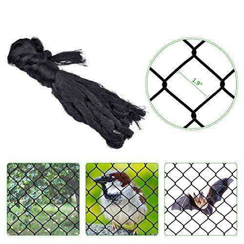 Hotusi 25'X50' (7M X 15M)Bird Netting Fruit Tree Protective Net Mesh Size Fish Pests Block Poultry Aviary (Mesh Tree)