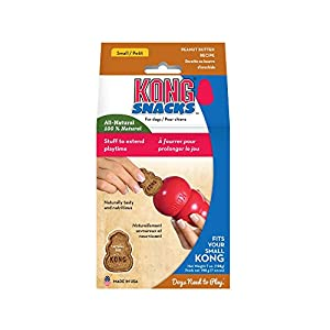 KONG – Snacks – All Natural Dog Treats (Best Used with KONG Classic Rubber Toys) – Peanut Butter Biscuits – for Small… Click on image for further info.