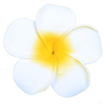 Amazon anleolife large white hawaiian hair flowersflorida anleolife large white hawaiian hair flowersflorida beach plumeria wedding flowers fabulous foam hawaii frangipani mightylinksfo