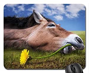 Spring nap Mouse Pad, Mousepad (Horses Mouse Pad)