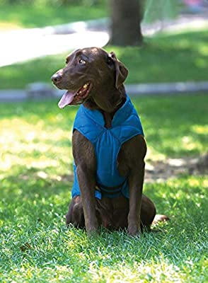 Kurgo Loft Waterproof Dog Jacket with Leash Opening