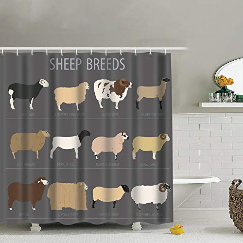 best bags Sheep Breed Icon Set Farm Animal Animals Wildlife Fabric Shower Curtain Heavy-Duty Waterproof and Polyester Bathroom Curtains for Shower Bathtubs 72X72 Inch