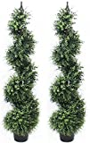4 Foot Eucalyptus Spiral Artificial Tree Realistic Premium Quality Pre Potted Home Office Decor Indoor and Outdoor (2 Pack)
