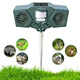 Best Animal Repellers - Ultrasonic Solar Animal & Pest Repeller - With Review