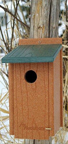 AUDUBON/WOODLINK Going Green Bluebird House Tan/green 7X8.25X12.5 IN ()