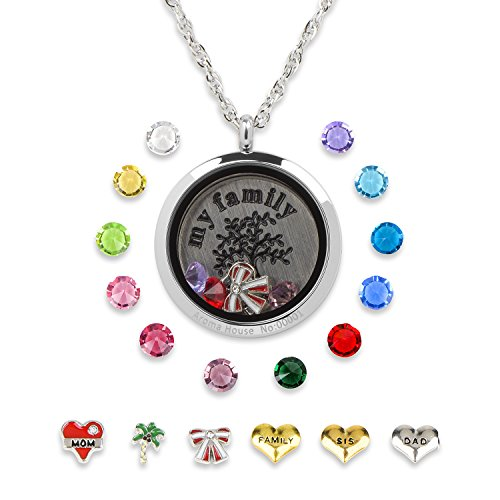 Stainless Steel Floating Living Memory Charms Locket Pendant Necklace,12 Birthstones+6 Charms -