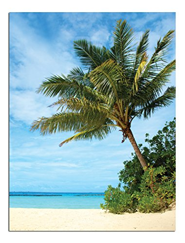 Jp London Solvent Free Poster Art Print Ready to Frame Tropical Beach Paradise At