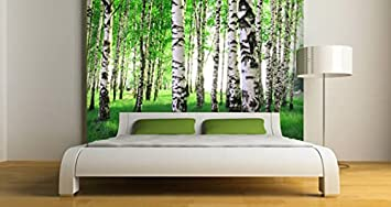 Amazoncom Spring Birch Trees Removable and Reusable Wall Mural 96