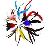18pcs Cat Feather Super Refill Cat Toys Cat Teaser Feather Replacement Cat Catcher Toy and Soft Furry Attachments Random Color by Lee-buty
