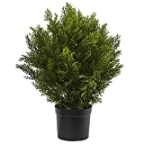 Nearly Natural 6880 2' Cedar Artificial Bush (Indoor/Outdoor)