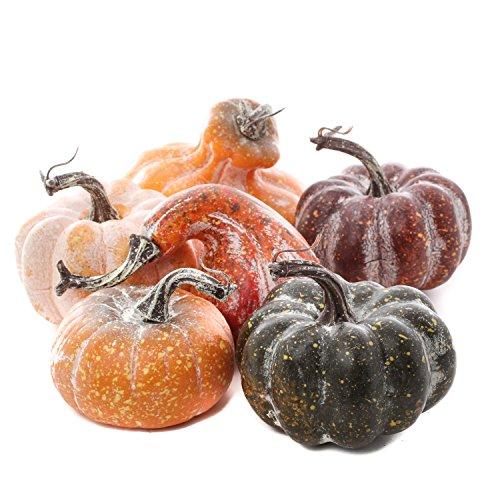 Factory Direct Craft Package of 6 Assorted Shape and Color Artificial Frosted Gourds and Pumpkins for Halloween, Fall and Thanksgiving Decorating
