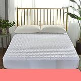 HYXL Anti-slip Bed mattress pad protector Mattress topper,Mattress pad with fitted skirt Bed mattress single bed pad protection pad thin mattress tatami-B 20x200cm(8x79inch)