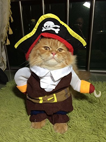 [AirFong Fashion Pirates of the Caribbean Design Dog Clothes, Costume for Dogs and Cats, Small] (Costumes For A Cat)