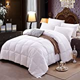 Alternative Comforter - Topsleepy Full Size Year Round White Alternative Goose Down Comforter with 100% Cotton Duvet Cover (Queen Size)