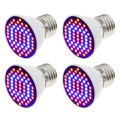 Best Led Light Bulbs For The Money in US - 2