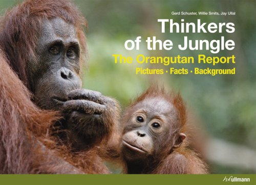 thinkers-of-the-jungle