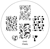 Best VAGA Fake Nails - CH40 Professional Nail Art Salon Quality Stamp Template Review