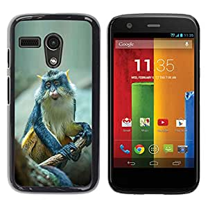 YOYOYO Smartphone Protección Defender Duro Negro Funda Imagen Diseño Carcasa Tapa Case Skin Cover Para Motorola Moto G 1 1ST Gen I X1032 - lindo pequeño mono mono exótica tropical