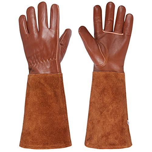 (Packfun Rose Pruning Gloves, Goatskin Leather Gardening Gloves for Men&Women, Extra Long Cowhide Suede Gauntlet for Forearm Protection, Thorn Proof Suitable for Roses Prickly Berries Pruning&Growing)