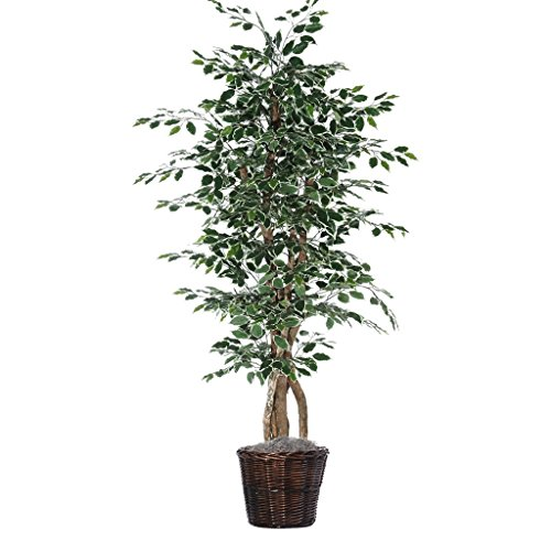 Vickerman 6-Feet Artificial Variegated Ficus Executive Tree in Decorative Container by Vickerman