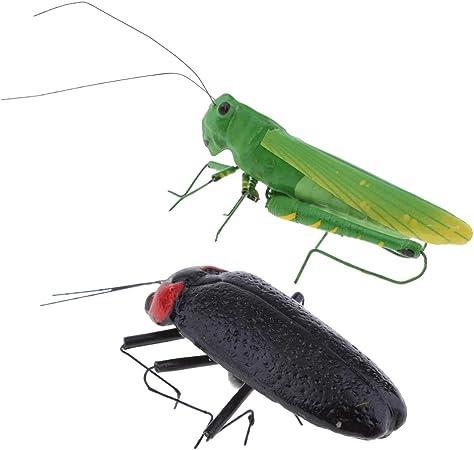 F Fityle 2 Piezas De Langosta Real Y Gusano De Luz Insectos Figuras Jardín Escultura Hogar / Escritorio / Ornamento De árbol: Amazon.es: Hogar