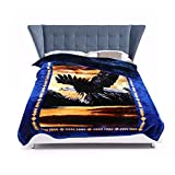 JYK 10 lbs King Ultra Silky Heavy Thick Korean Mink Bed Blanket, Two-Ply Printing Reversible (Eagle&Dolphin)