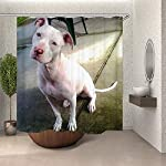 SARA NELL Bathroom Shower Curtain American Pitbull Terrier White White Pit-Bull Shower Curtains Durable Fabric Bath Curtain Waterproof Bathroom Curtain with 12 Hooks(72 L by 72 W inches) 5