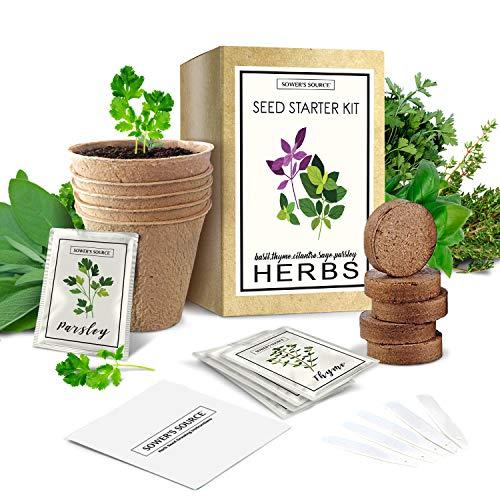 Indoor Herb Garden Starter