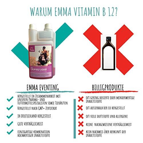 EMMA Magnesio Vitamina B12 para Caballos I Calma para Caballos I alimento líquido suplementario para los Nervios, en Caso de estrés I para la Calma I con ...