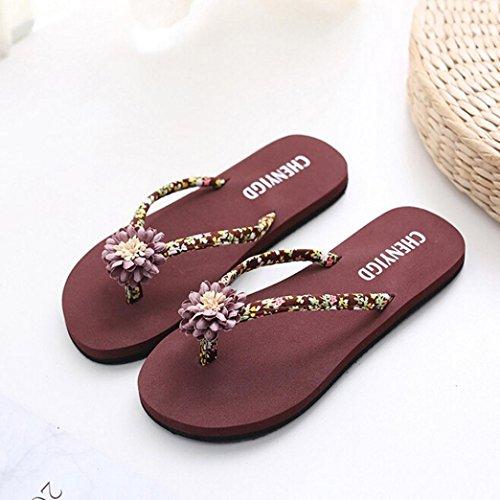 playa Chanclas la zapatos sandalias baño de Verano Mujer de chanclas zapatillas sandalias Mujeres las delgadas señoras LMMVP de Marrón ojotas WcTqpYwrTf