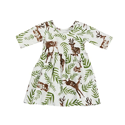 ZLOLIA Baby Clothes Autumn Toddler Girl Floral Deer Princess Pageant Holiday Long Dress (100, ()