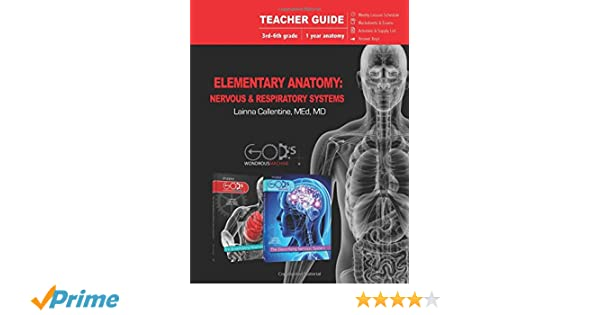 Elementary Anatomy: Nervous & Respiratory Systems (Teacher Guide ...
