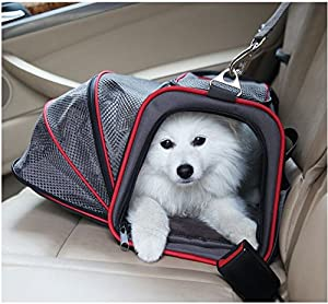 New Puppy Checklist: Airline Approved Pet Carrier
