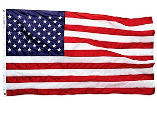 Annin Flag (Annin 002450R 3X5 Nylon USA American Flag.)